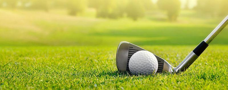 golf stick and ball -SingSaver