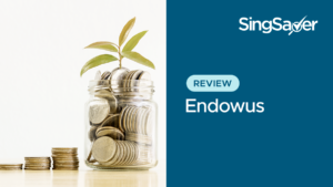 Endowus Review: Investing Your Cash, CPF And SRS Money At Low Fees